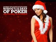Bodog Poker 12 Days of Christmas