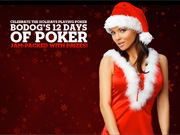 Bodog Poker Kerstactie
